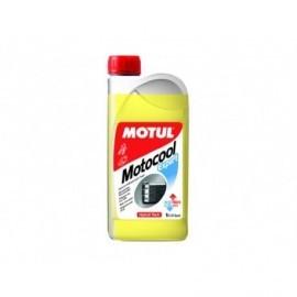 Motul Motocool Expert - 25 płyn chłodzący